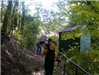 People participate in community service on a forested trail
